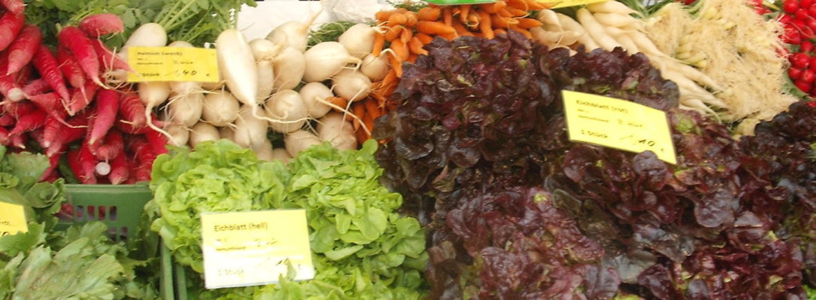 Salate, Ostergruß, weißer Rettich, Karotten